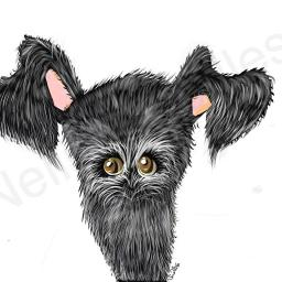 Peekaboo - A4 print by Nellie Doodles