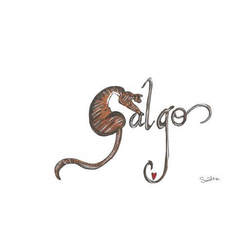 Galgo .jpg