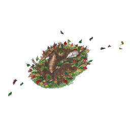 Autumnal Roach.jpg
